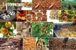 Agro-aliados Productos para la venta