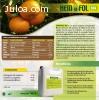 HEMOFOL N4: abono foliar, rico en aminoácido libre (25%)