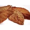 Hojas de tabaco - Burley Classic