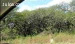 La Pampa 500 hectáreas