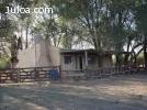 Venta de campo en Argentina! ganadero, con coto d caza armad